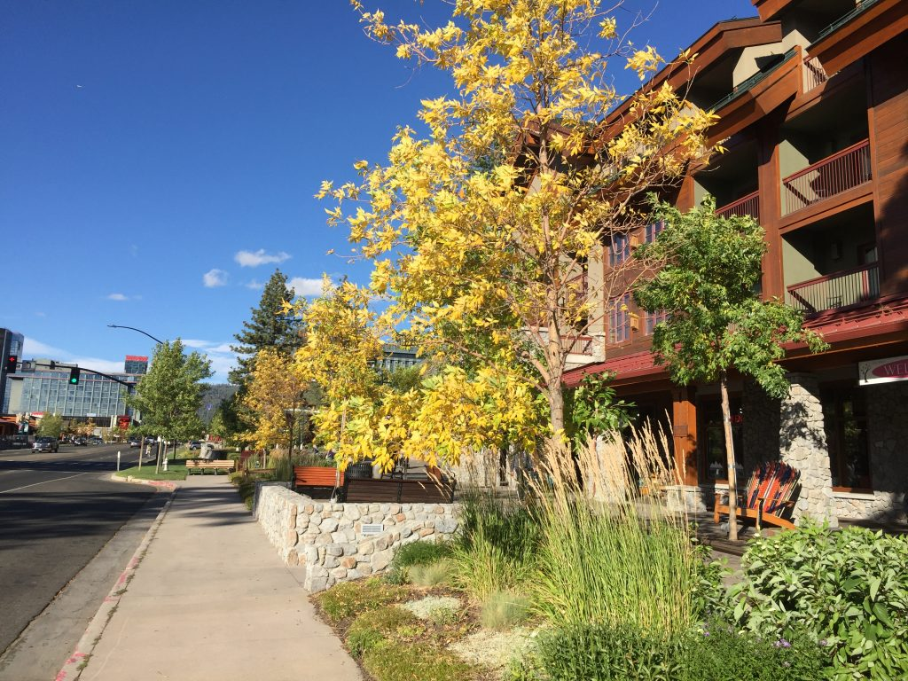 It's officially fall in Tahoe