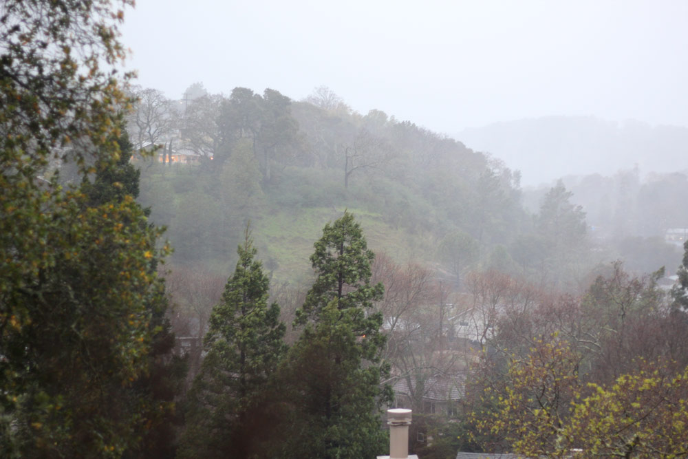 Tabs and Novato's first big winter storm of 2017