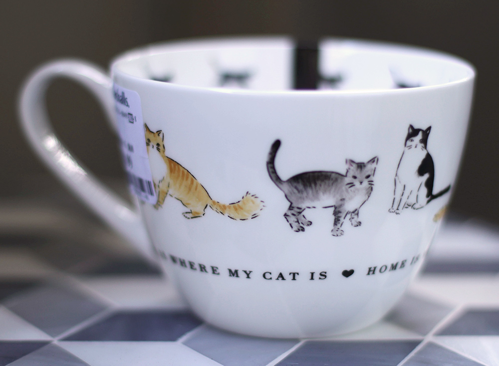 portobellow cat cup tabby