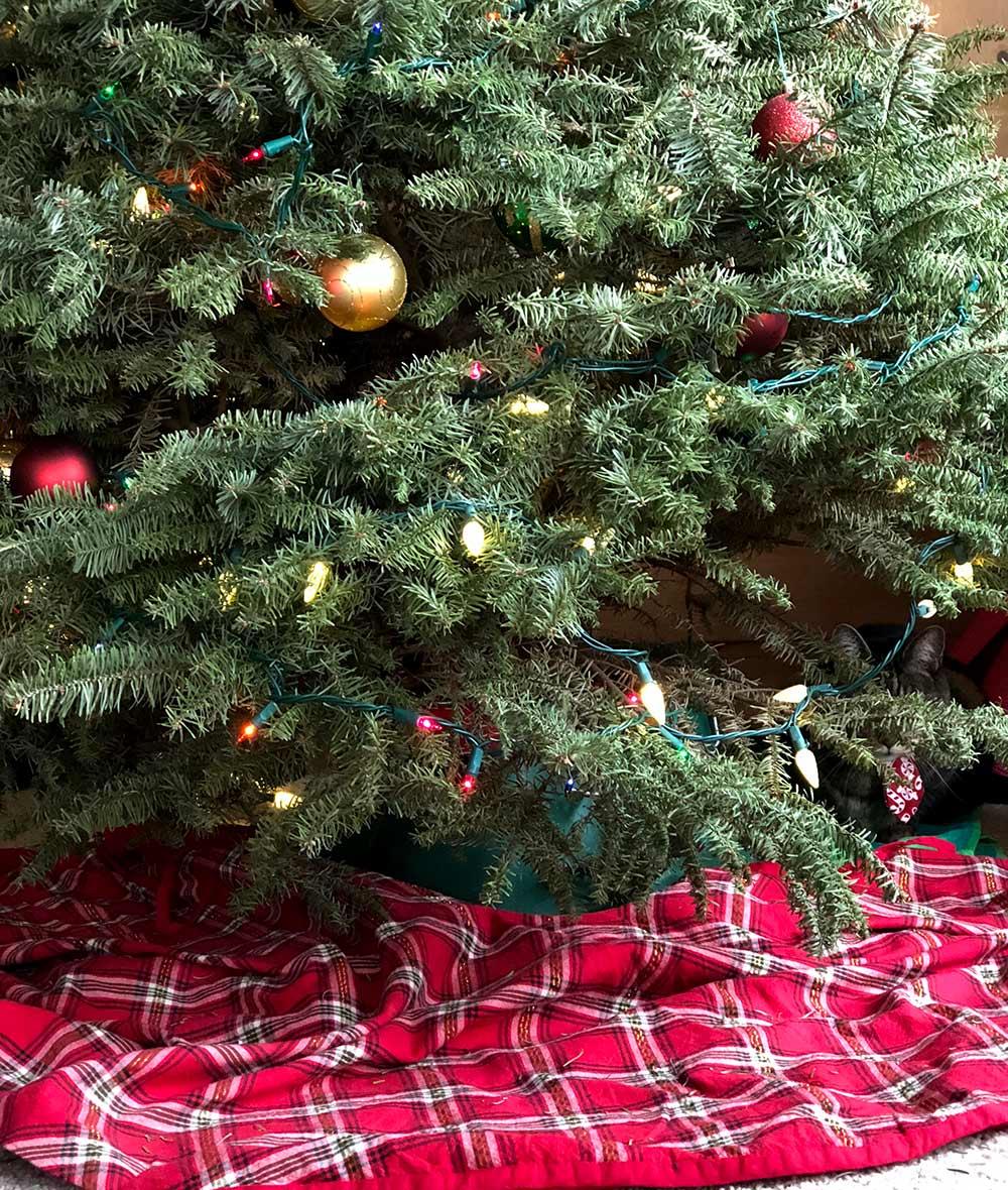 tabs christmas 2017