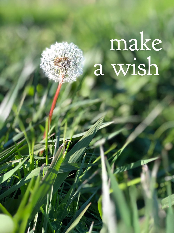 faire un vœu