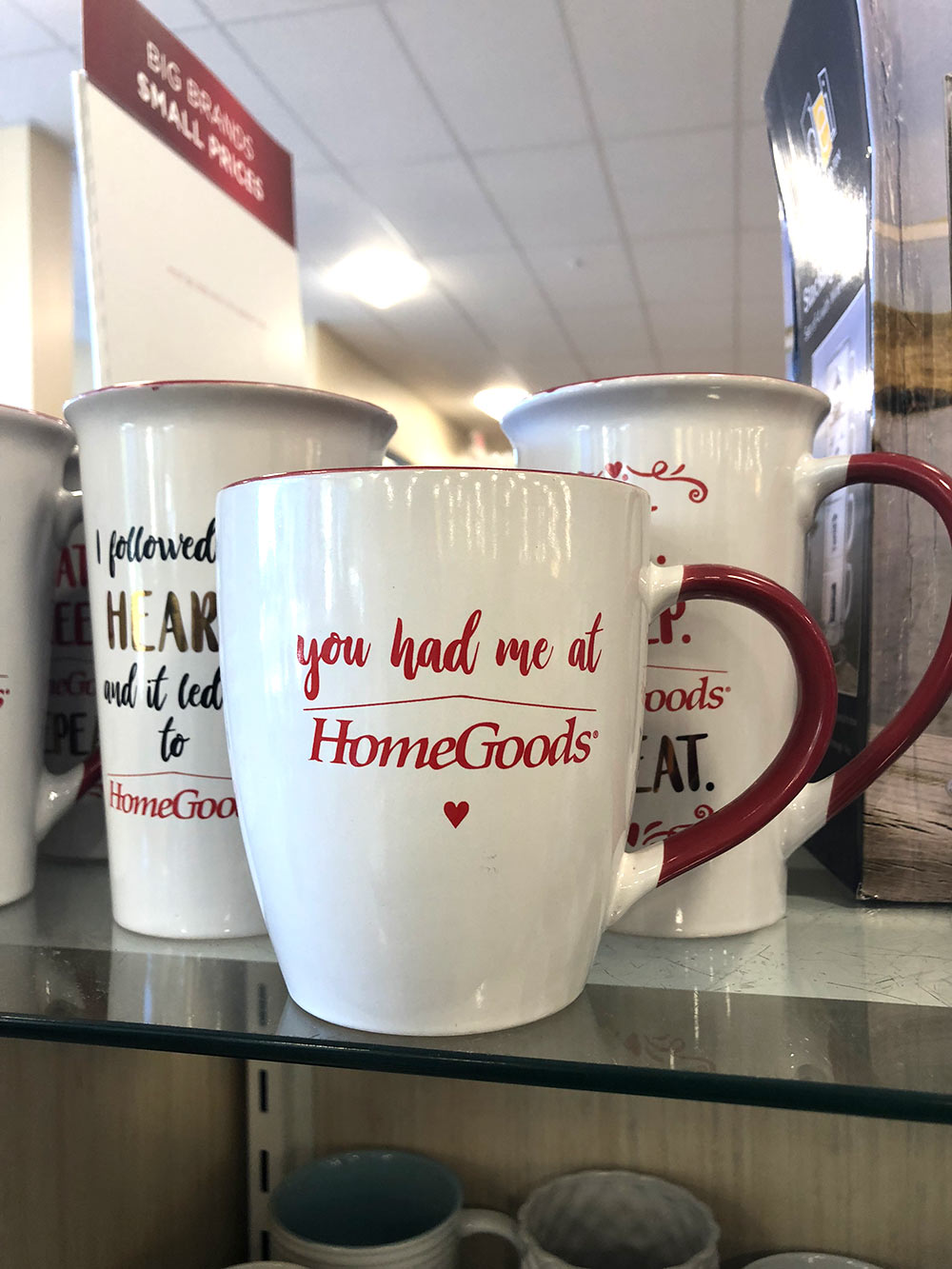 you had me at homegoods mug