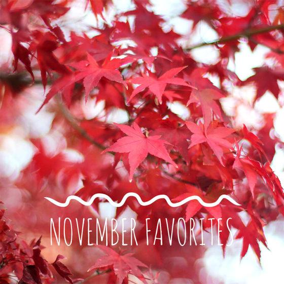 November 2018 Favorites