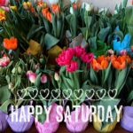 happy saturday tulips
