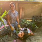 aloe plant deck cocobaby