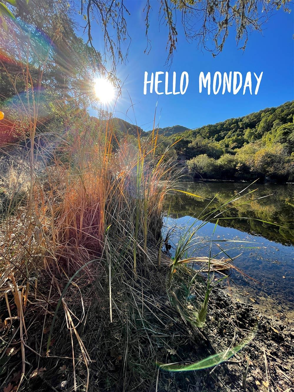 hello monday pond ivc