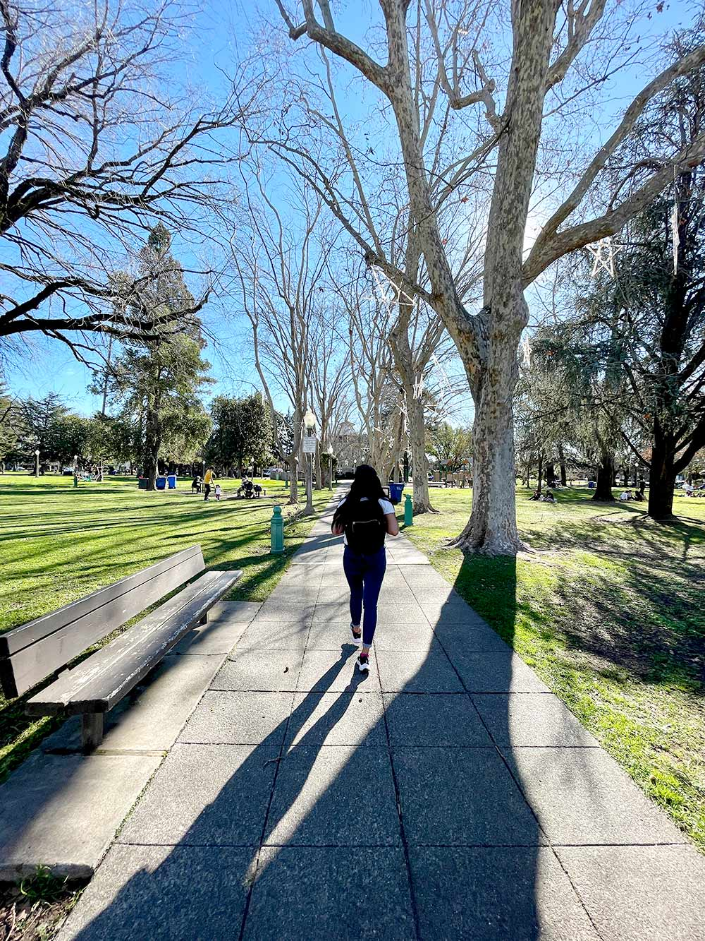 sonoma plaza ka walking
