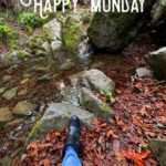 happy monday waterfall pond